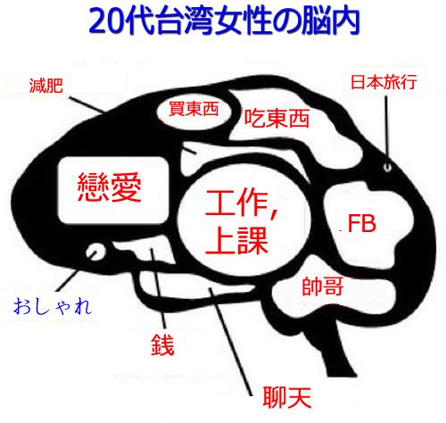 台湾女性的脳内是應該這樣的。